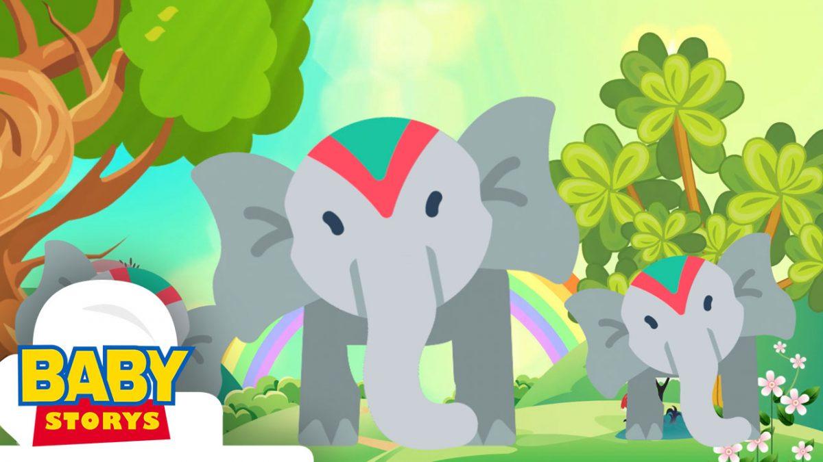 Elephant Song   เพลงช้าง